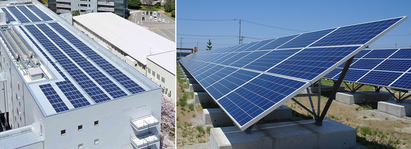 Solar Panels on the Roof and Ground