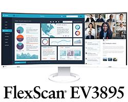 FlexScan EV3895